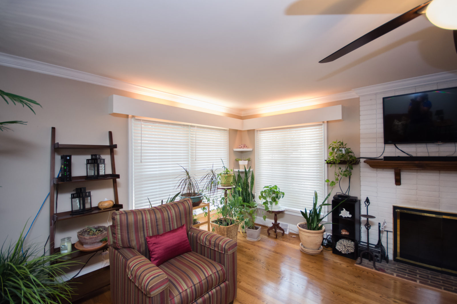 Madison Park home, living room with large windows