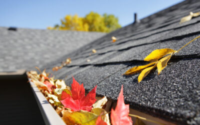 Gutter cleaning: How important is it?